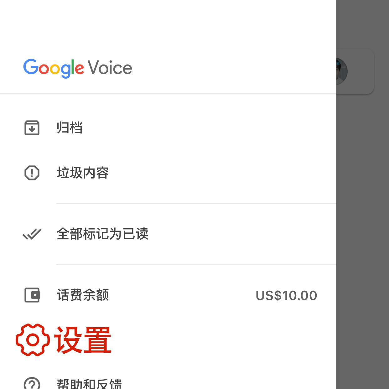 Google Voice 进入设置页面